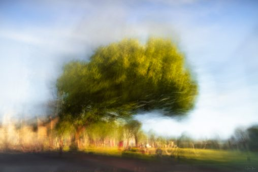 Abstract photo of town park