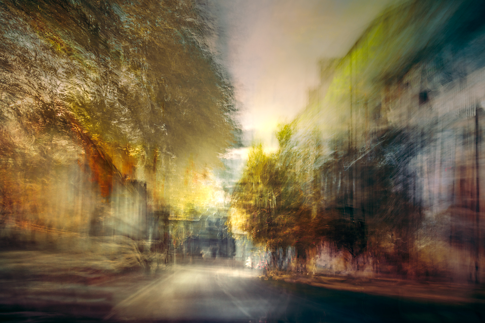 abstract tree lined street